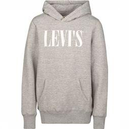 Levi's Kids Pullover Graphic  Light Grey Mixture