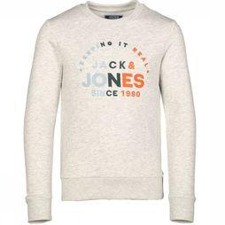 Jack & Jones Pull Jortypes Sweat Jr Gris Clair Mélange