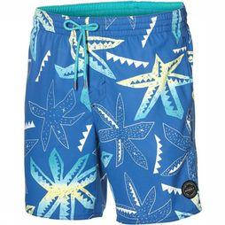 Boardshorts Pm Long Vert Art