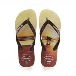 Havaianas Tongs Hype Brun Sable