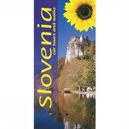 Sunflower Slovenia 2015