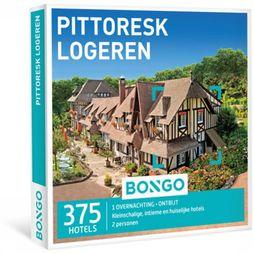 Bongo Pittoresk Logeren No Colour