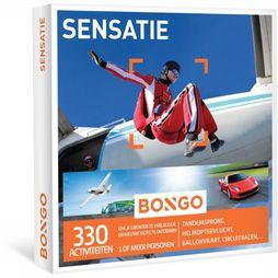 Bongo Sensatie No Colour