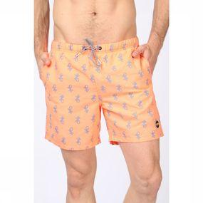 Swim Shorts Gekko