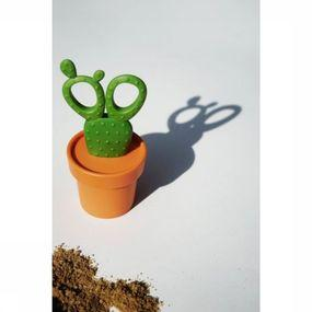 Gadget Cactus Scissors And Container