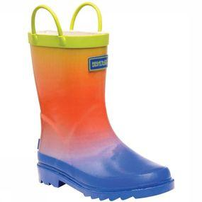 Laars Minnow Jnr Welly