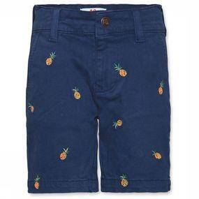 Shorts Barry Printed Chinos