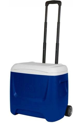 Igloo Koeltas Island Breeze 28 Roller Blauw