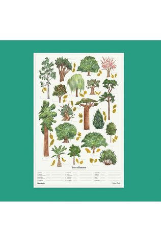 The Chartologist Gadget Poster Trees Of Interest white/mid green