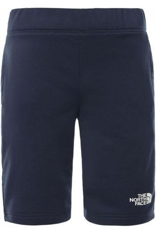 The North Face Short Surgent Marineblauw