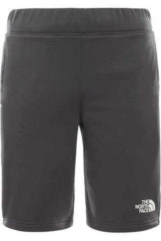 The North Face Short Surgent Donkergrijs