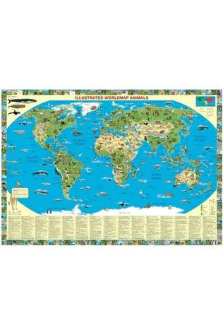 K&S DRUCKBUNT VERLAG Animals Of The World Illustrated Map K&S Druckbunt Verlag 2014