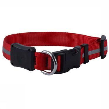 Eclairage Nite Dawg Led Dog Collar