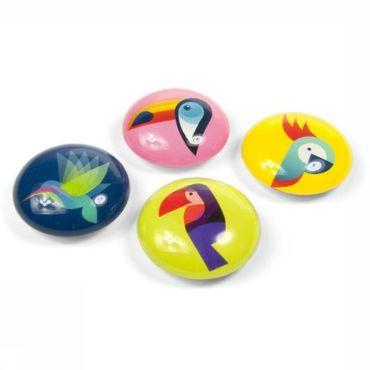 Gadget Eye Paradisebirds Magnets