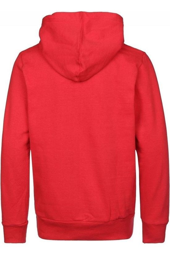 Levi's Kids Pull Lvb Batwing Screenprint Hoodie Rouge