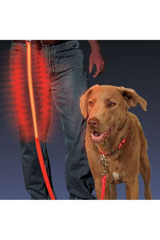 Nite Ize Nite Dawg Led Pet Leash Dog No colour / Transparent