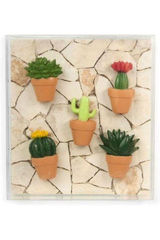 Trendform Gadget Cactus Magnets Mid Green/Camel Brown