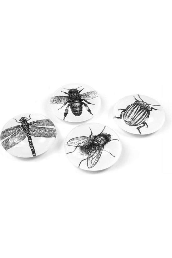 Trendform Gadget Eye Bug Magnets white/black