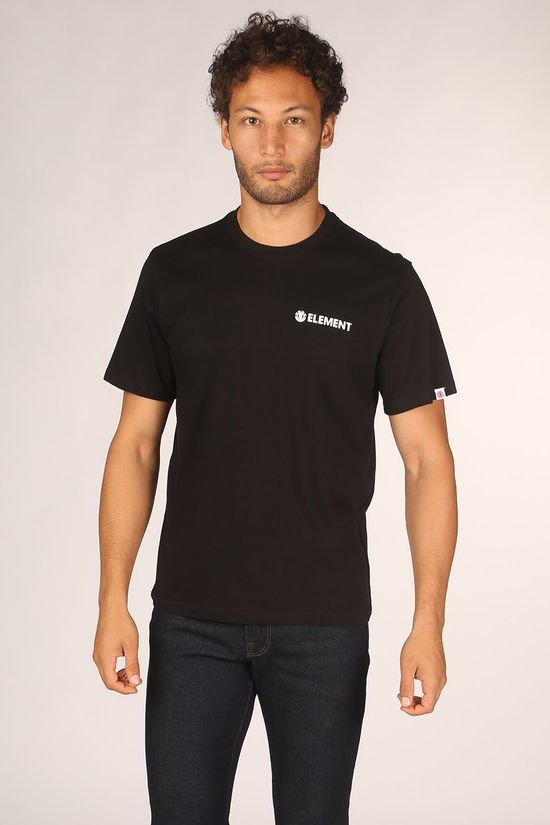 Element T-Shirt Blazin Chest black