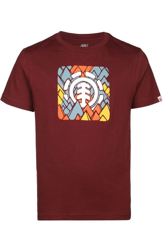 Element T-Shirt Palette Ss Boy Bordeaux / Marron