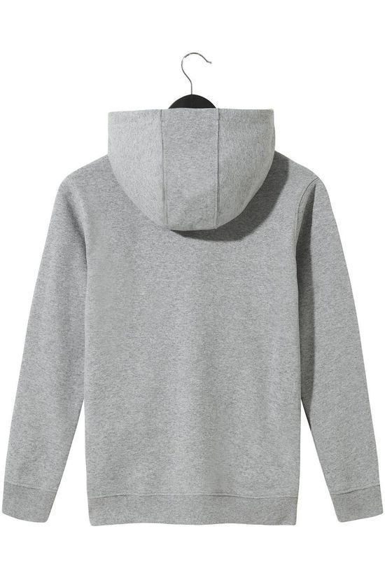Vans PULLOVER VANS BY VANS CLASSIC PO HOODIE FT BOYS Light Grey Marle