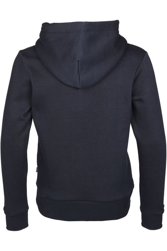 Jack & Jones Trui elogo Sweat Hood 2 Col Aw20 Jr Donkerblauw