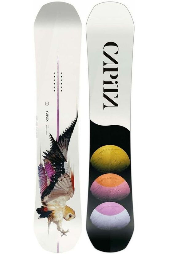 Capita Snowboard Birds Of A Feather Blanc/Pourpre