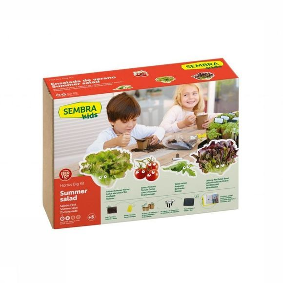 Sembra Gadget Big Kit Summer Salad Geen kleur
